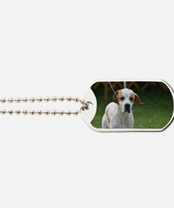 Sweet Portuguese Pointer Dog Tags