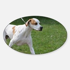 Portuguese Pointer Puppy Sticker (Oval)