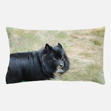 Sweet Pomeranian Pillow Case