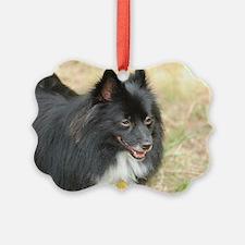 Cute Pomeranian Dog Ornament