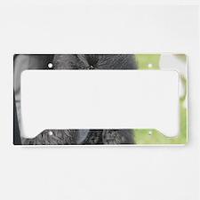 Standard Poodle License Plate Holder