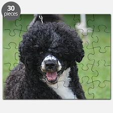 Adorable Portuguese Water Dog Puzzle