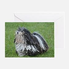 Adorable Puli Dog Greeting Card