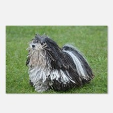Adorable Puli Dog Postcards (Package of 8)