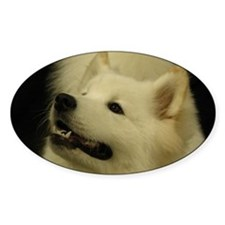 Sweet Samoyed Decal