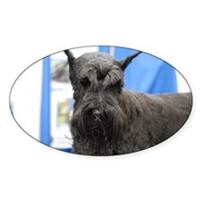 Black Schnauzer Decal