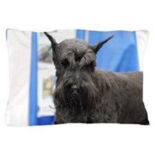 Black Schnauzer Pillow Case
