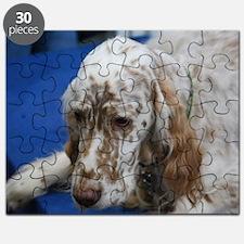 Adorable English Setter Dog Puzzle