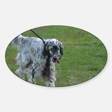 Black and White English Setter Sticker (Oval)
