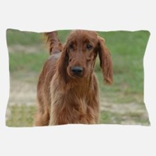 Silky Red Irish Setter Pillow Case