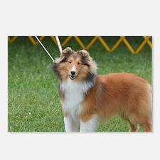 Adorable Sheltie Dog Postcards (Package of 8)