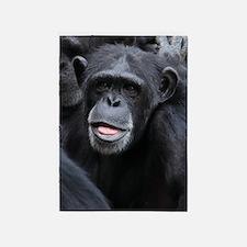 Black Monkey 5'x7'Area Rug
