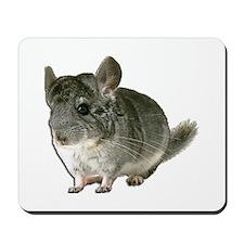 Chinchilla Photo Mousepad