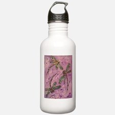 Dragonflies Pink Fizz Sports Water Bottle