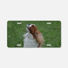 Sweet Spaniel Aluminum License Plate