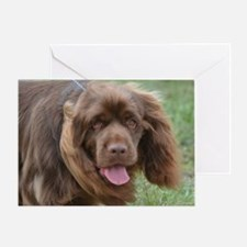 Sussex Spaniel Greeting Card