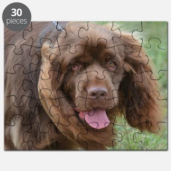 Sussex Spaniel Puzzle