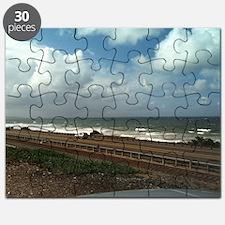 California Winter Puzzle