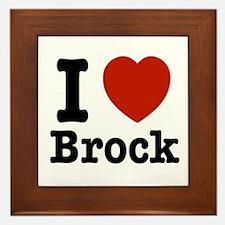 I love Brock Framed Tile