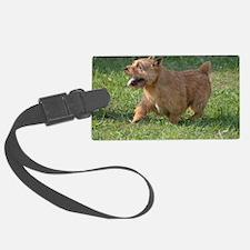Cute Glen of Imaal Terrier Dog Luggage Tag