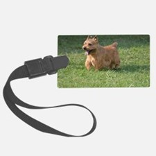 Adorable Glen of Imaal Terrier D Luggage Tag