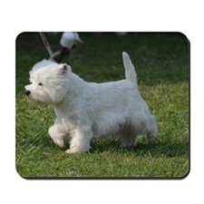 Cute West Highland White Terrier Mousepad