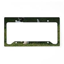 Cute West Highland White Terr License Plate Holder