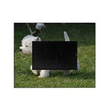 Cute West Highland White Terrier Picture Frame
