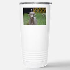 Weimaraner Dog Stainless Steel Travel Mug