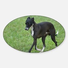 Adorable Whippet Sticker (Oval)