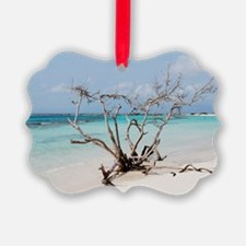 Baby Beach in Aruba Ornament