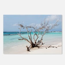 Baby Beach in Aruba Postcards (Package of 8)