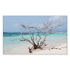 Baby Beach in Aruba Decal