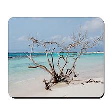 Baby Beach in Aruba Mousepad