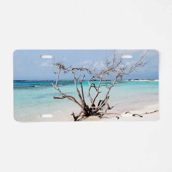 Baby Beach in Aruba Aluminum License Plate