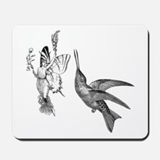 Fairy Teases Hummingbird Mousepad