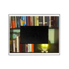 cat headlights eyes book Picture Frame