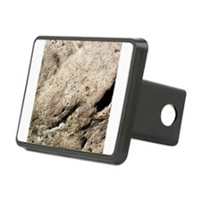 Beige rock texture Hitch Cover