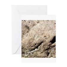Beige rock texture Greeting Cards