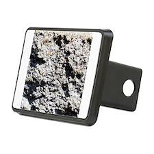 Rock concrete texture Hitch Cover