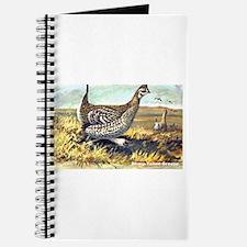 Sharp-Tailed Grouse Bird Journal