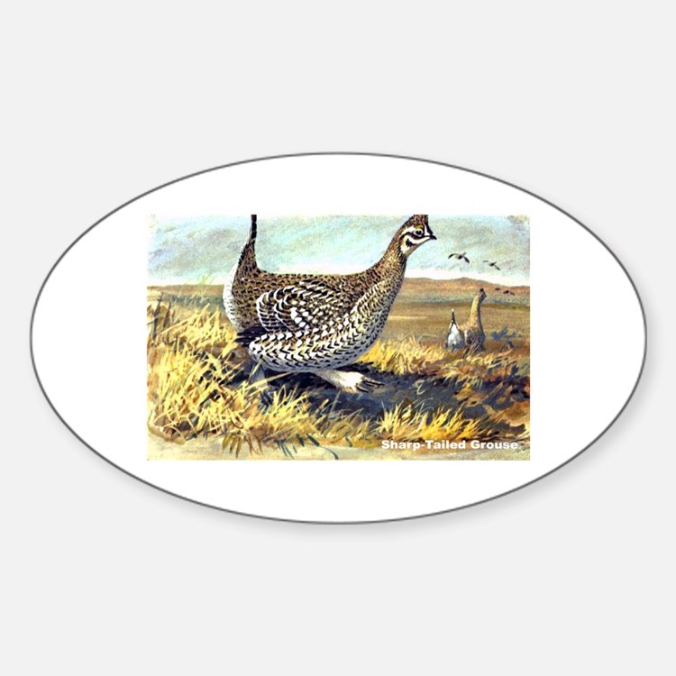 Sharp-Tailed Grouse Bird Oval Decal