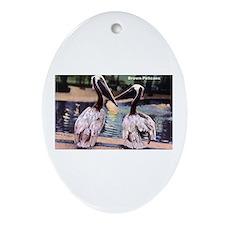Brown Pelican Bird Oval Ornament