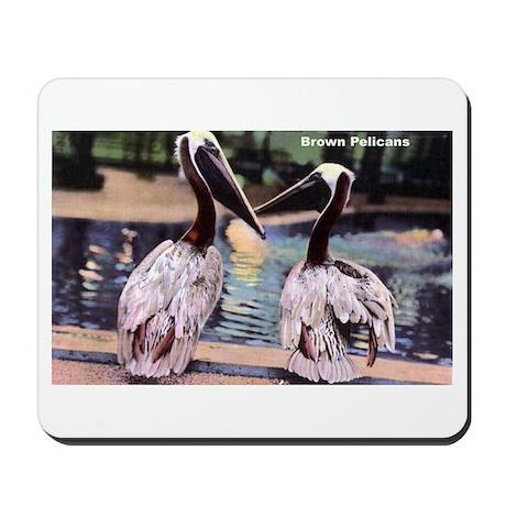 Brown Pelican Bird Mousepad