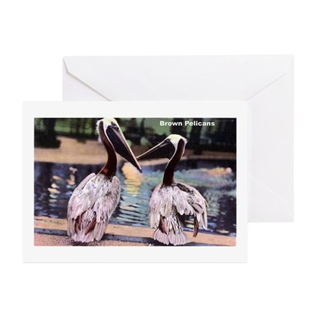 Brown Pelican Bird Greeting Cards (Pk of 10)