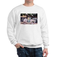 Brown Pelican Bird (Front) Sweatshirt