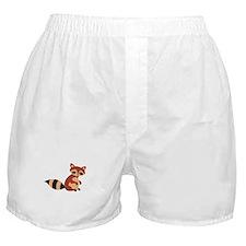 Raccoon Animal Boxer Shorts