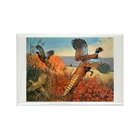 Pheasant Bird Rectangle Magnet (10 pack)