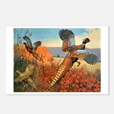 Pheasant Bird Postcards (Package of 8)