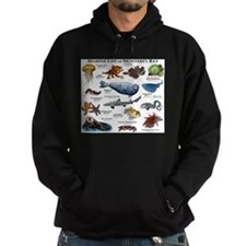 Marine Life of Monterey Bay Hoodie